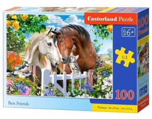 Puzzle 100 Best Friends CASTOR